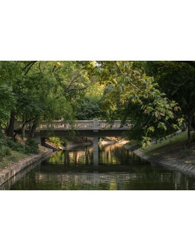 Podul ascuns