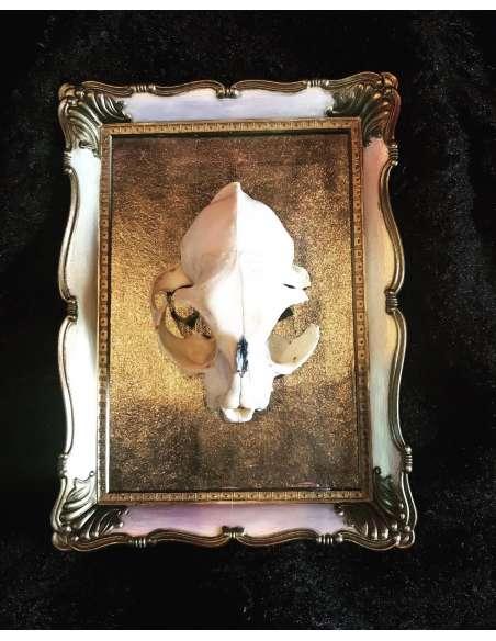 Craniu ornament