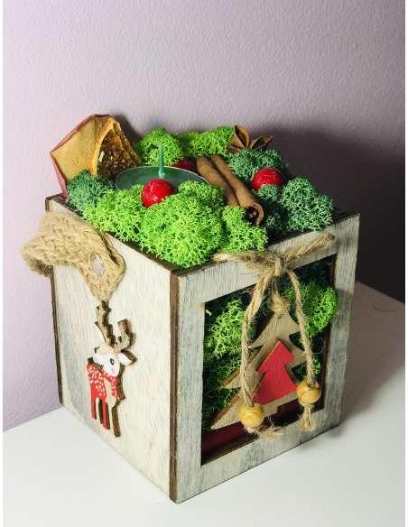 Cutie cu licheni stabilizati de Craciun
