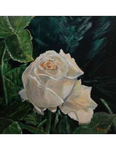 Trandafir alb galbui
