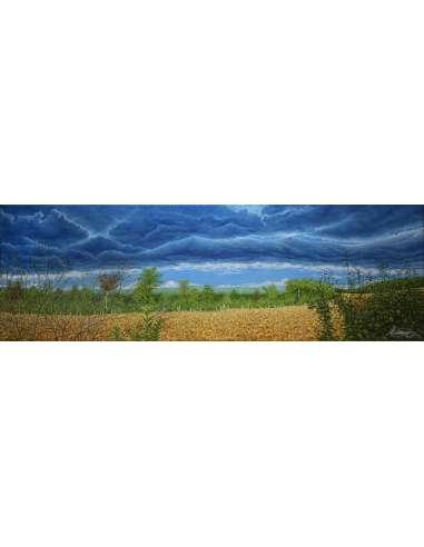 Nori deasupra lanului de porumb