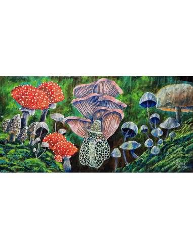 Ciupercute - Mushrooms